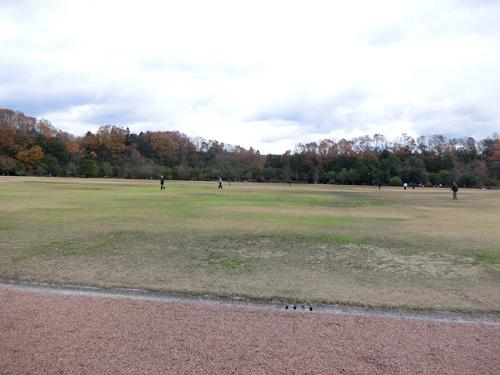 ふれあいパーク緑の丘、到着~! その1!