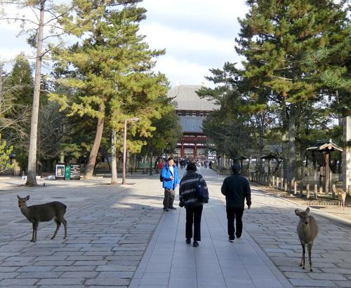 東大寺、その1。