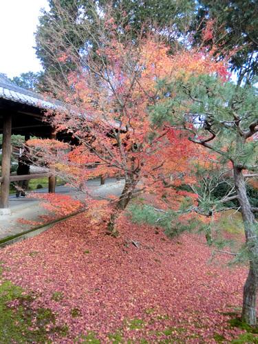 東福寺、その2。