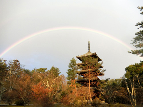 仁和寺、その3! 良く見ると2重の虹。