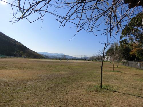 ご近所の、片渕公園。