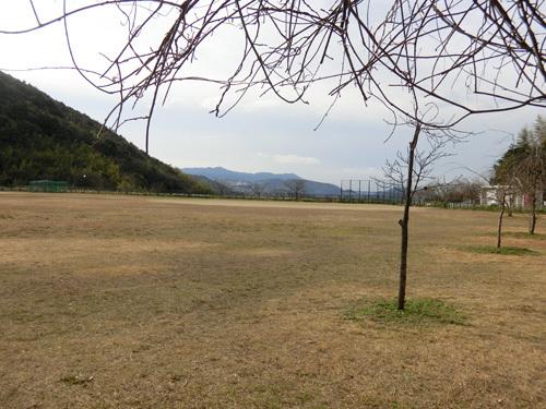 11日、片渕公園にて・・・、