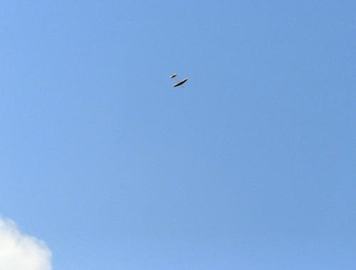 ケントウン14G、飛んでるトコ。 その1!