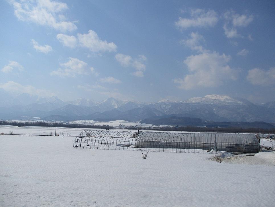 富良野山々