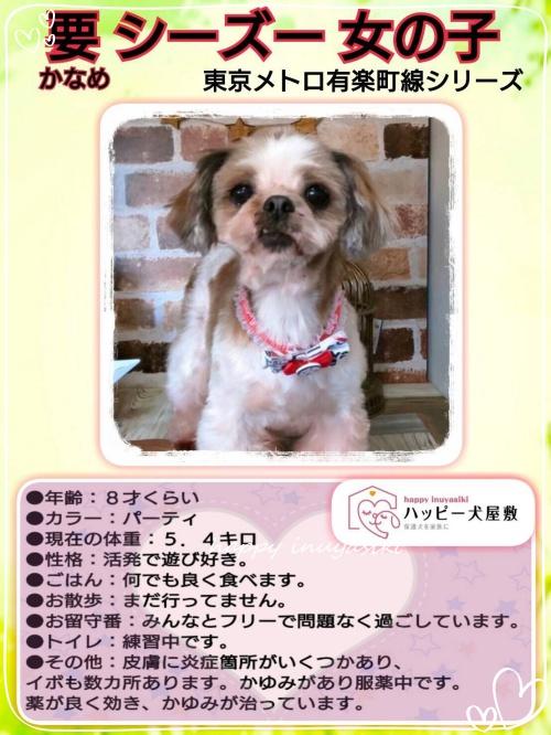 mini20182019第2回ふれあい会in小豆沢_190219_0041