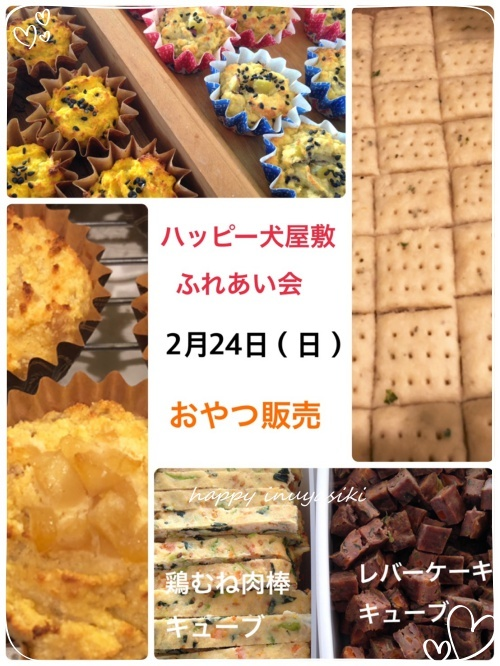 mini2018S__59785248.jpg