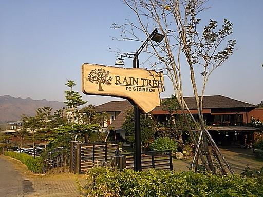 rein tree hotel welcome elephant (1)
