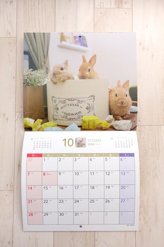 うさくらカレンダー