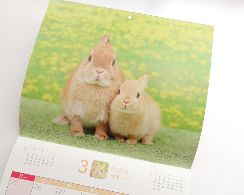 うさくらカレンダー1