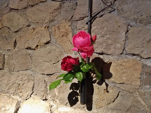 石壁と鉄の花器と冬のバラ