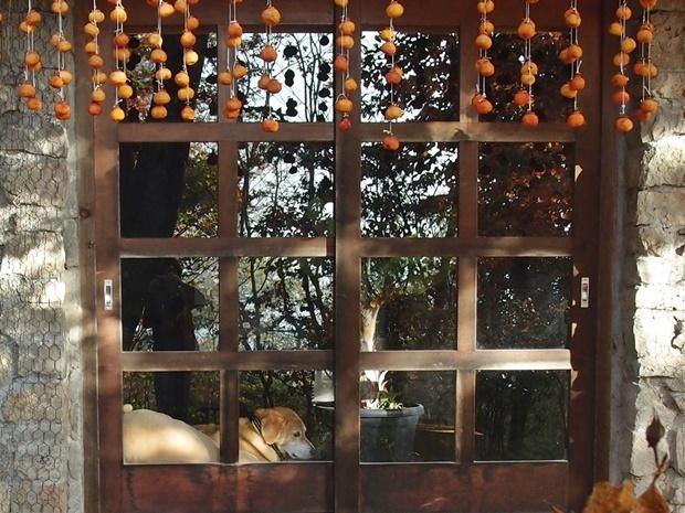 干し柿の窓辺でらく、こっくり
