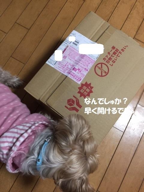ごはん (2) - コピー