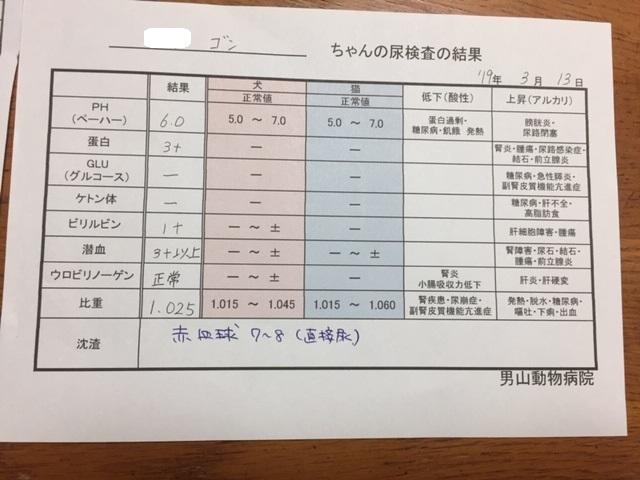 尿検査 - コピー