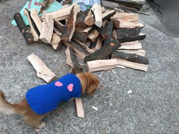 薪割り横とピザ窯前2