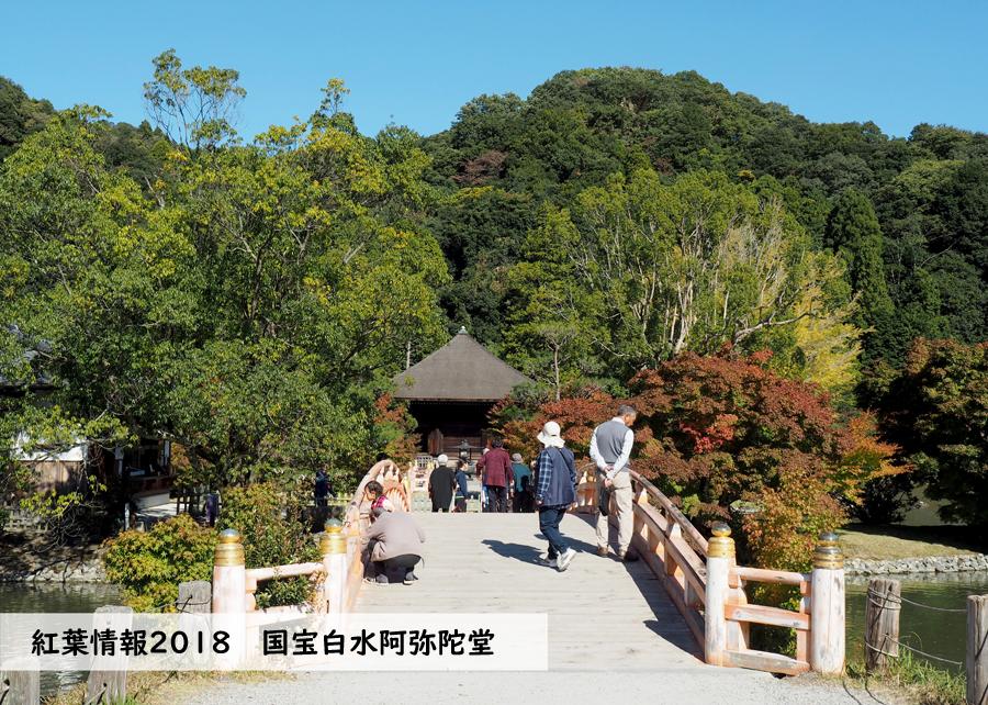 紅葉情報2018 国宝白水阿弥陀堂 [平成30年10月31日(水)更新]1