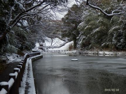 丹後沢公園2