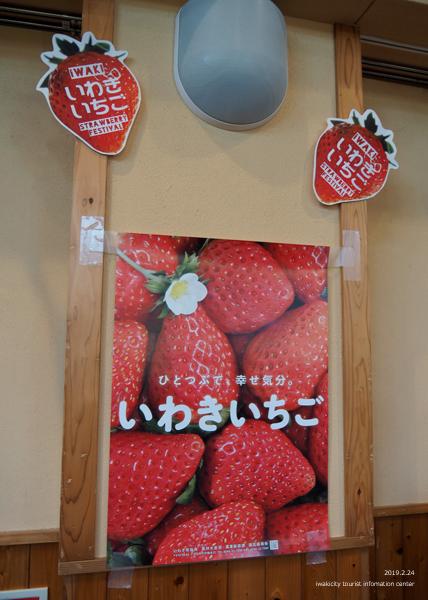 「いわきいちご いわきねぎフェスティバス2019」イベントリポート! [平成31年2月24日(日)更新]23