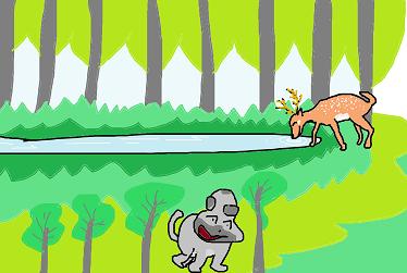鹿が水を飲む ペ