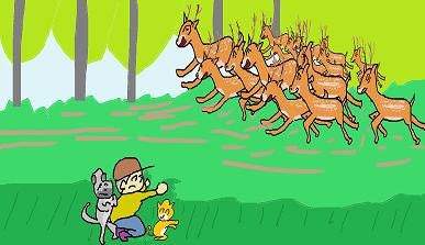 鹿の集団が