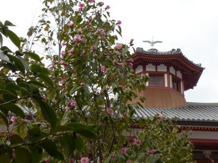 椿 と 飛鳥乃温泉 1