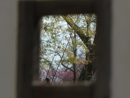 松山城 紫竹門西塀の狭間から