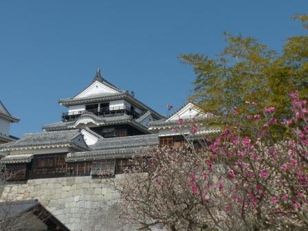 松山城・天守閣 と 梅 4
