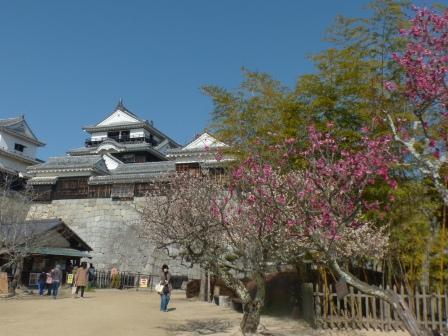 松山城・天守閣 と 梅 5