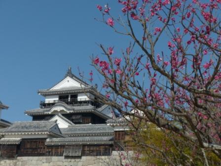 松山城・天守閣 と 梅 6