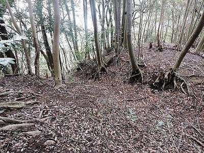 難波江城跡の踏査 (3)