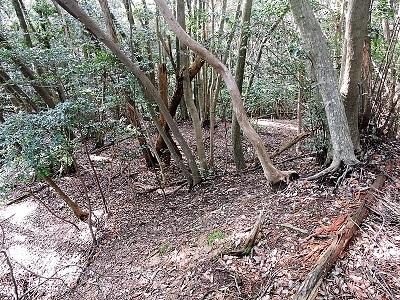 難波江城跡の踏査 (4)