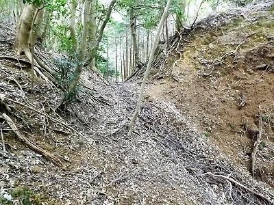難波江城跡の踏査 (9)