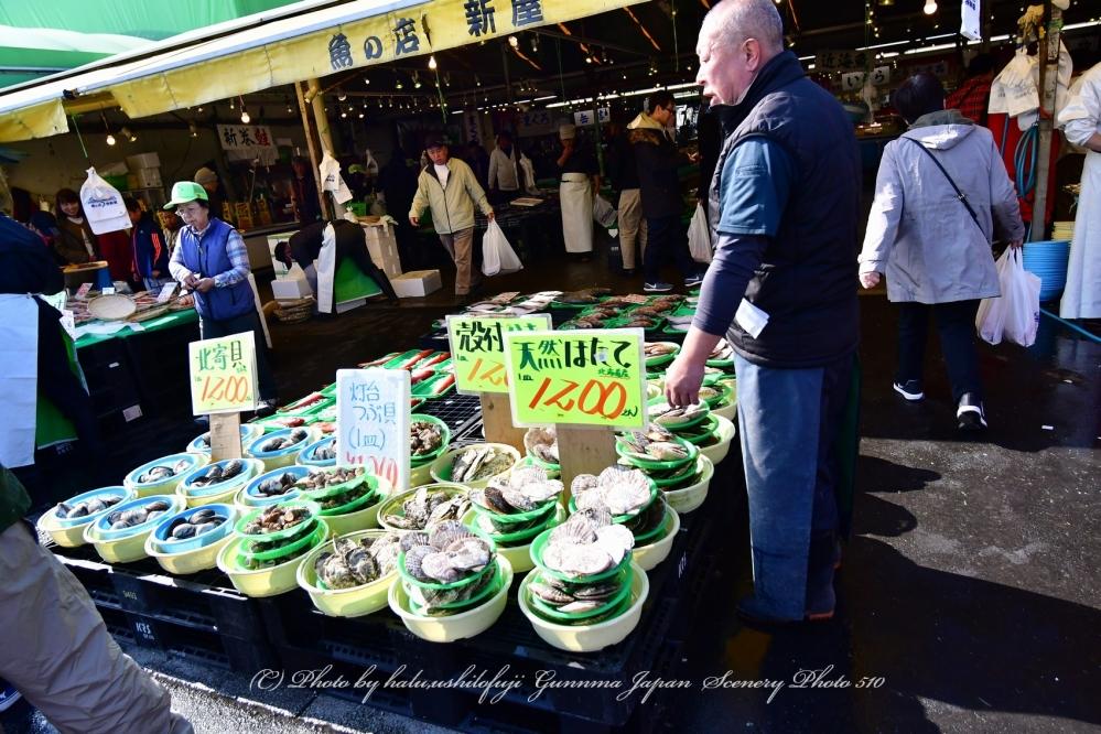 おさかな市場 4SN
