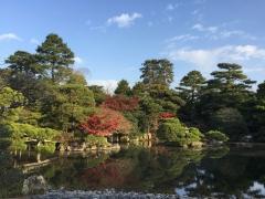 京都大徳寺と御所の秋2018御所2