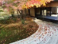 京都大徳寺と御所の秋2018大徳寺1