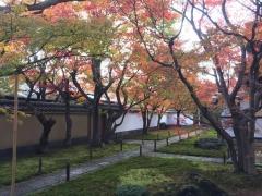 京都大徳寺と御所の秋2018大徳寺2