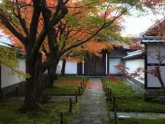 京都大徳寺と御所の秋2018大徳寺3