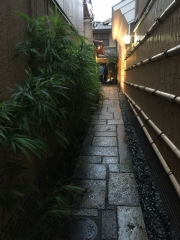 京都鴨川の秋2018モリタ屋1