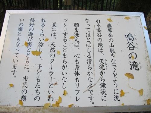 藤原岳 (43)