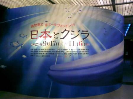 Whale JAPAN_2011Sep