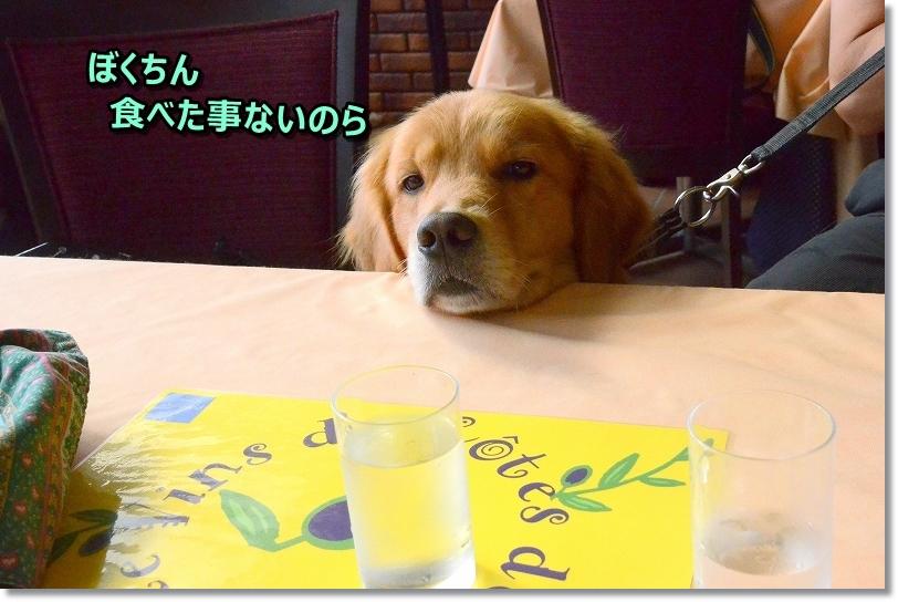 DSC_9207じ~・・・