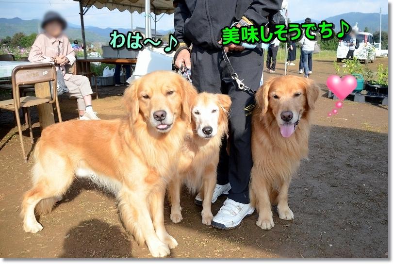 DSC_9281お芋さん♪