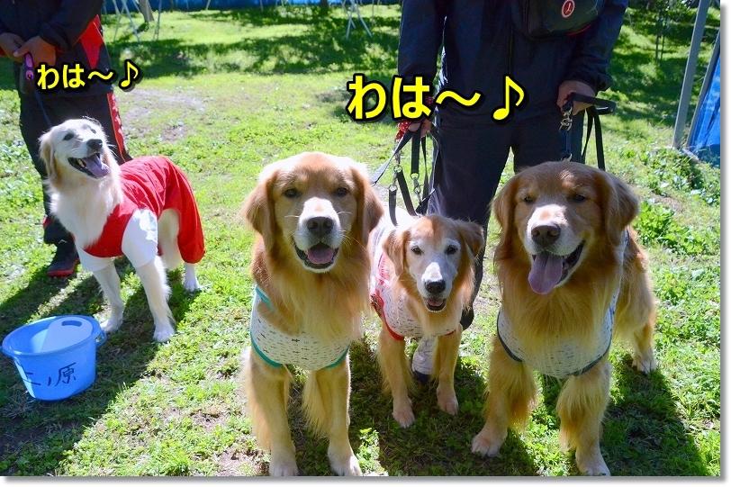 DSC_9413和は~♪