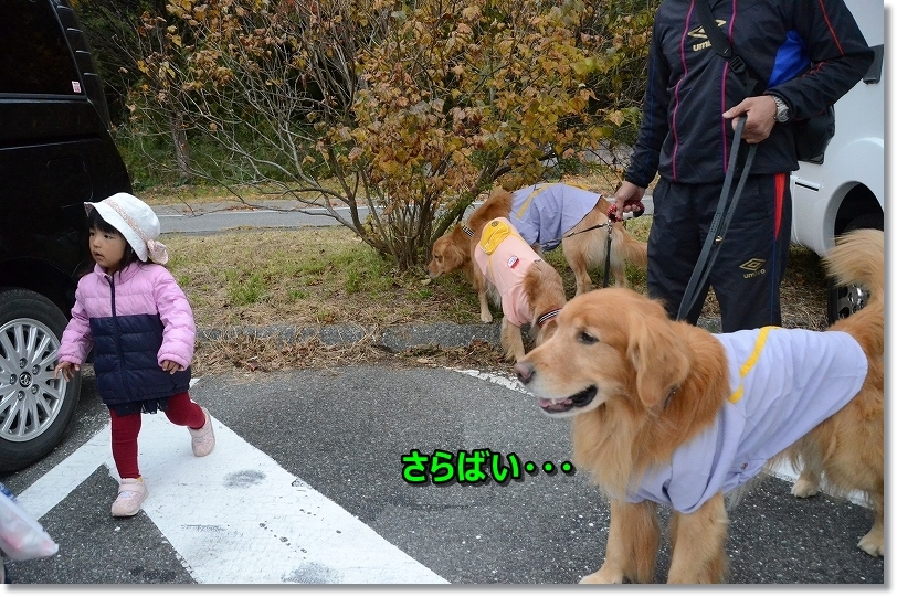 DSC_9941バイバイアオちゃん