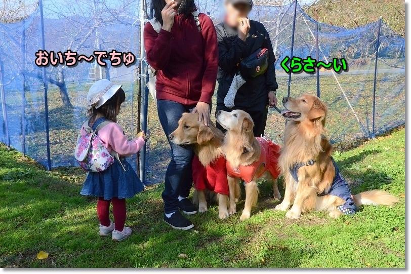 DSC_0840ぱく