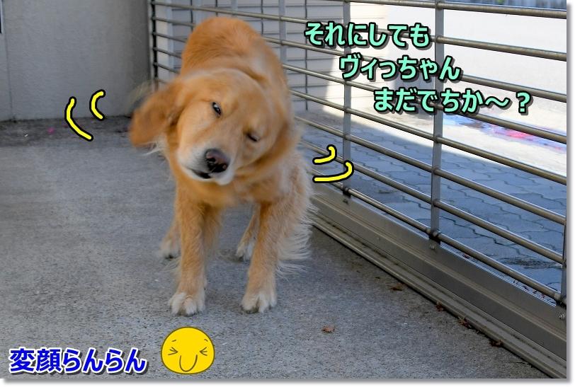 DSC_0654遅いでしゅね~