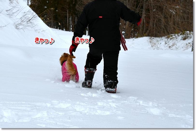 DSC_1891きゃ~