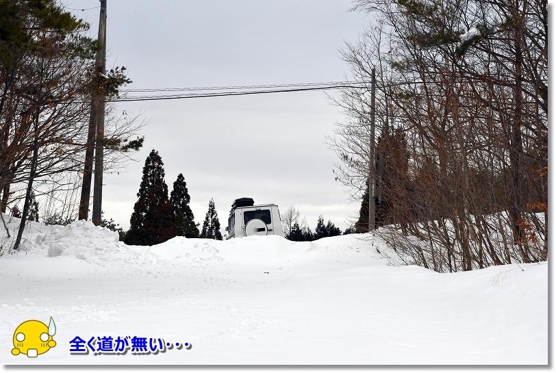 DSC_1904雪かきしてない道がない