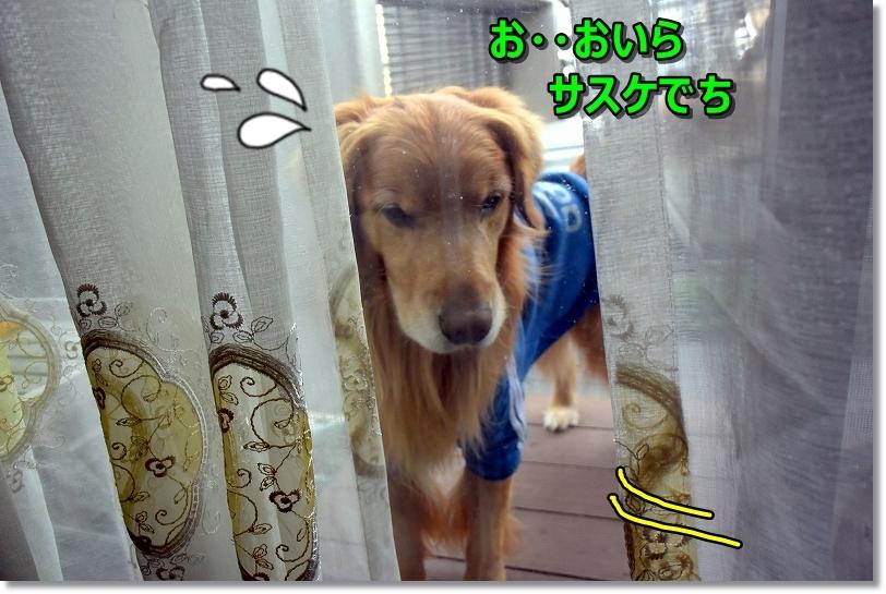 DSC_4891じ~・・・