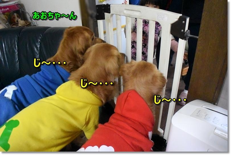 DSC_5035じ~・・・