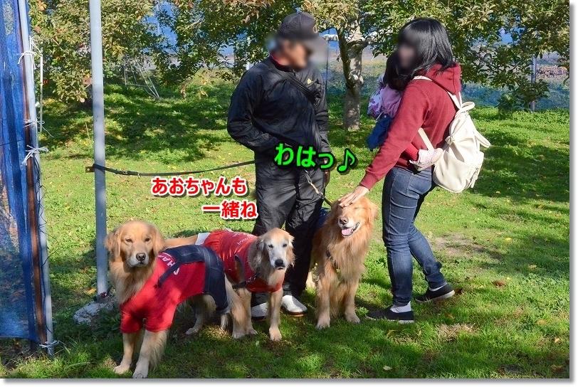 DSC_0816_201811252006414e4.jpg